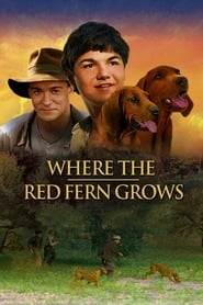 Where the Red Fern Grows(2020)