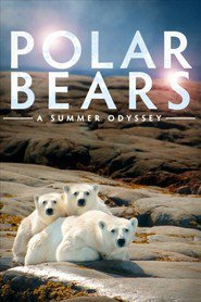 Watch Polar Bears: A Summer Odyssey (2021) Fmovies