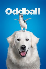 Watch Oddball and the Penguins (2016) Fmovies